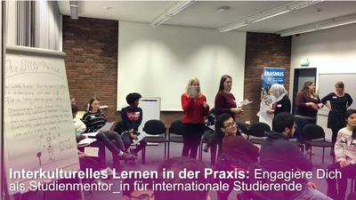 Intercultural mentors